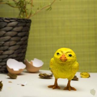 Miloš kuře
